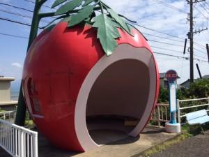 トマト(小深井)