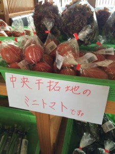干拓地トマト