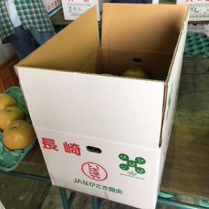 箱詰めされた梨