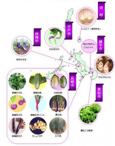 長崎の伝統野菜